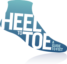 Heel to Toe: A Guide to Feet from Socks4Life.com