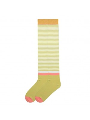 K. Bell Women's Vintage Stripe Over the Knee Socks - Honey